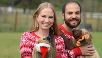 Christmas Picture with Sloths